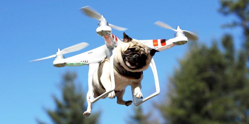 Как называется летающая камера на управлении, квадрокоптер