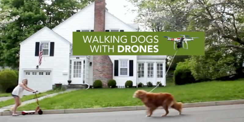 Выгул собаки квадрокоптер