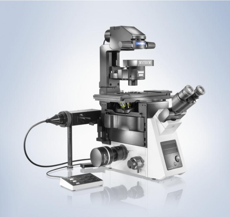 как называется прибор, увеличивающий в несколько раз, микроскоп